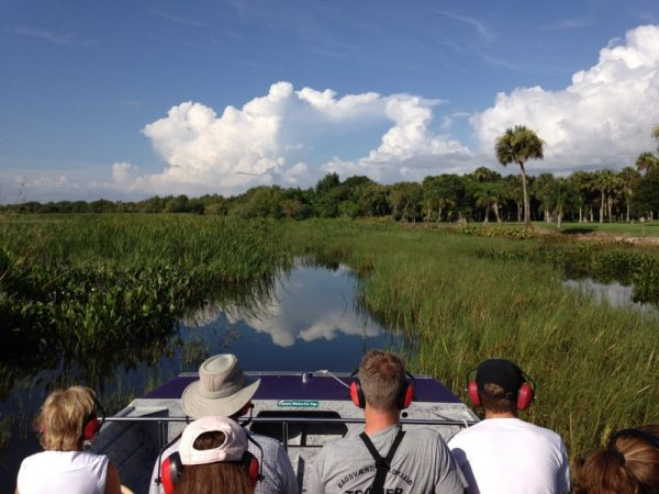 A naturalist-guided safari including an airboat ride in the Western Everglades